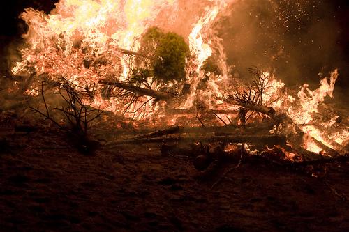 Image Result For Incendio