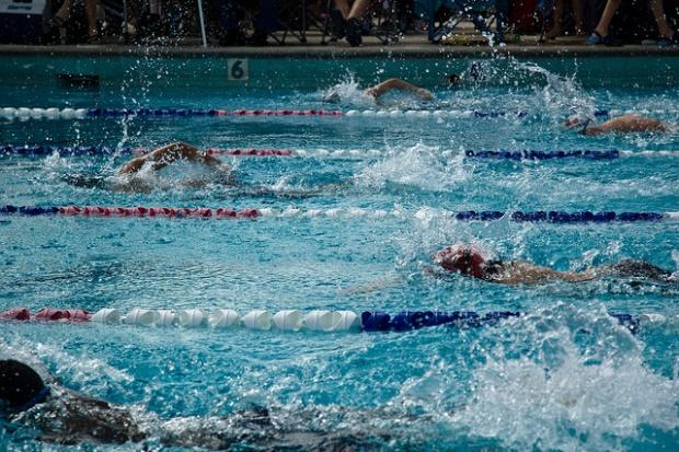 nadadores en una piscina por frankjuarez