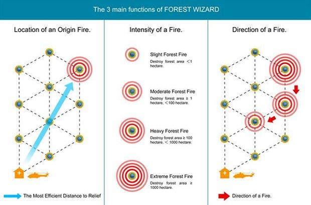 Funciones de Forest Wizard