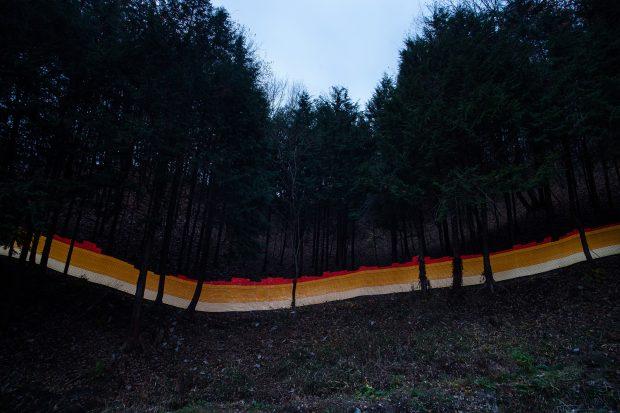 Valores superiores a 1 Sv/h en un bosque en Japón